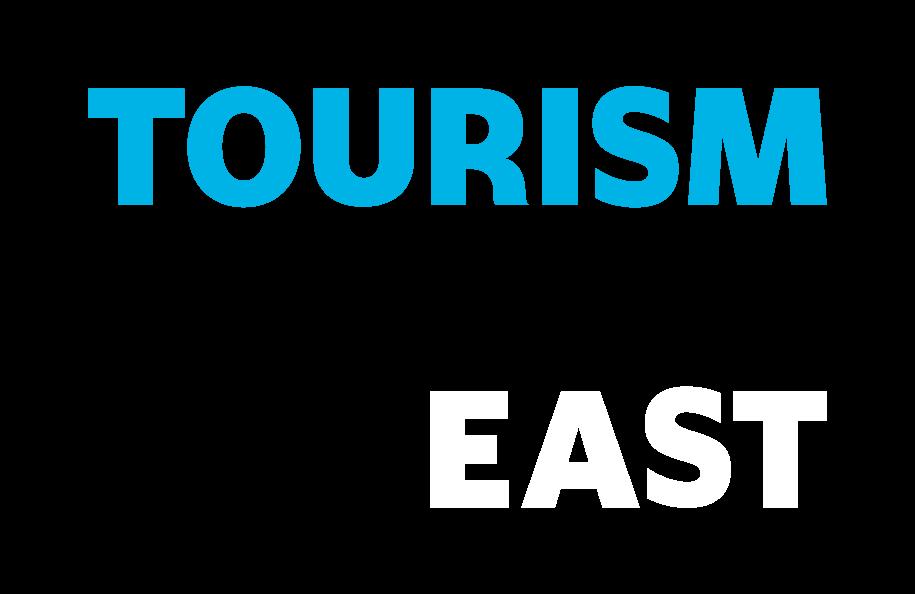 tne-logo-blue-grey-white-v2
